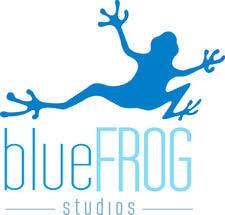 blue frog white rock